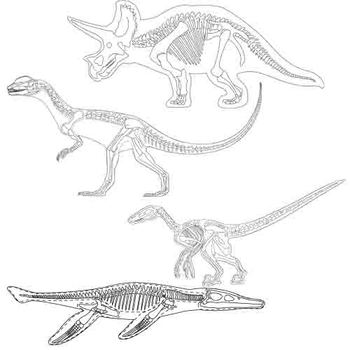 Dinosaur Skeleton Clip Art