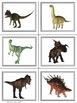 Dinosaur Sorting 2 legs or 4 legs?