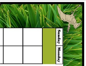 Dinosaur Calendar! Dinosaur Theme! Dinosaur Bulletin Board! Dinosaur Classroom!