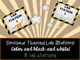 Dinosaur Themed Lab Station Labels!