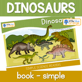 Dinosaur book (simple)