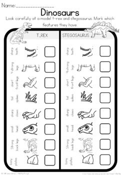 Dinosaur observation sheet