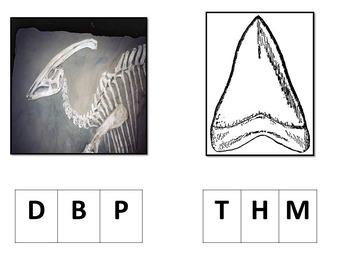 Dinosaure Theme beginning sound