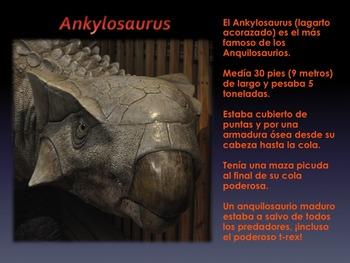 Los Dinosaurios: Los Anquilosaurios - Los Dinosaurios con Armadura