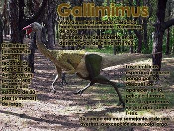 Los Dinosaurios: Los Ornitomímidos - Los Dinosaurios Imitadores de Aves
