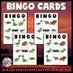 Dinosaur Activities (Dinosaur Science Bingo)