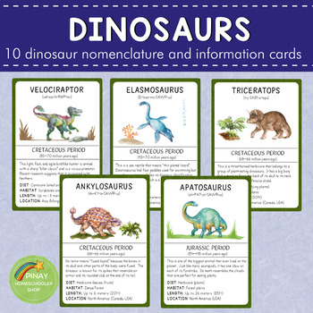 Dinosaurs Montessori 3 Part Cards and Information Cards