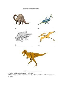 Dinosaurs: A Short Study