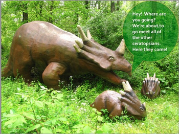 "Dinosaurs: Ceratopsians - ""The Horned and Beaked Dinosaurs"" PowerPoint"