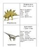 Dinosaurs Description Cards