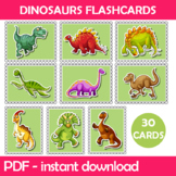 Dinosaurs Flash Cards Instant Download PDF; Preschool, Kin