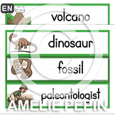 Dinosaurs - Illustrated Word Wall (30)