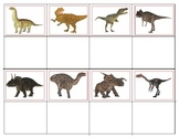 Realistic Dinosaurs:: Mini  Matching and Memory Game
