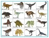 Dinosaurs :  Mini Shadow Matching Cards