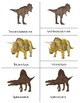 Realistic Dinosaurs: Three Part Cards for Activity Centers