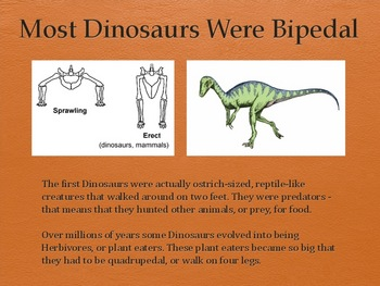 Dinosaurs Vol 2: First Dinosaurs - Slideshow Powerpoint Presentation