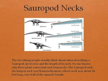Dinosaurs Vol 3: Sauropods - Slideshow Powerpoint Presentation