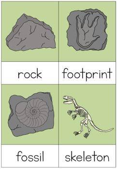 Dinosaurs nomenclature cards