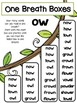 Diphthongs and Special Vowels -Teaching Resources and Literacy Center Activities