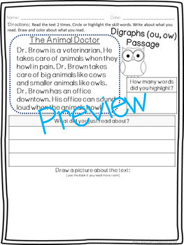 Vowel Teams ou & ow Pack! 2 Weeks of Lesson Plans, Activities, and Word Work!