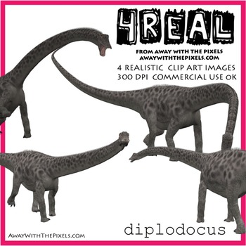 Diplocodus - 4 Realistic Dinosaur Clip Art Images