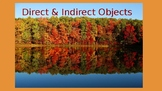 Direct and Indirect Object Complete Mini Lesson & Activity