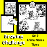 Art Lesson - Directed Drawing Challenge: Series 9 Tigers