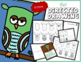 Directed Drawing - Owl