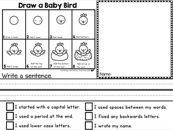 Directed Drawing and Writing - Spring
