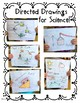 Directed Drawings for Science