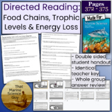 Directed Reading Food Chains and Trophic Levels For McGraw Hill Marine Science