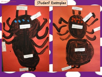 Directed Spider Painting with Labels