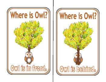 Directional Activity- Owls