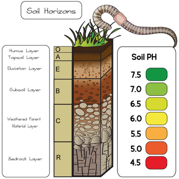 Soil and Compost Clip Art - Earth Science Graphics - 29 piece set