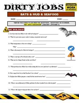 Dirty Jobs : Bats - Mud - Fish (career video worksheet)