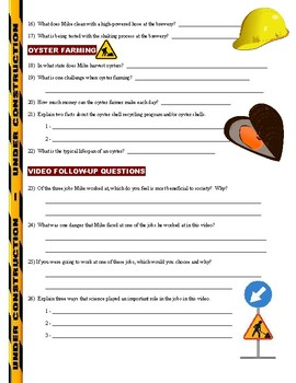 Dirty Jobs : Chick Sexer (science career video worksheet)