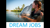 Dirty Jobs, Dangerous Jobs, and Dream Jobs