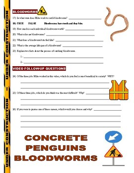 Dirty Jobs : Penguin Keeper (career video worksheet)