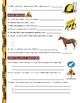 Dirty Jobs : Roadkill Cleaner and Horse Breeder (career video worksheet)