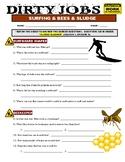 Dirty Jobs : Sludge Cleaner and Bee Keeper (video worksheet)