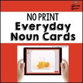 No Print Noun Cards