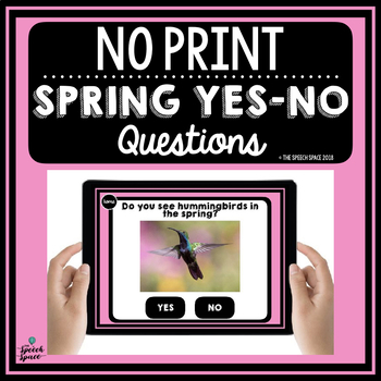 Spring Yes-No Questions