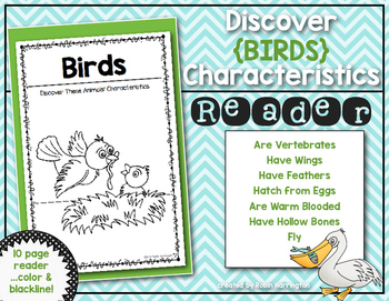 Discover Animals {Birds} Science Reader for First Grade & Kindergarten