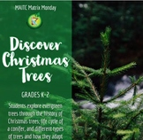 Discover Christmas Trees Lesson Plan