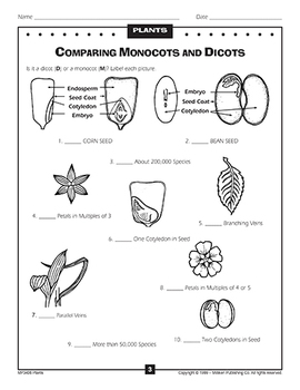 Discover! Plants