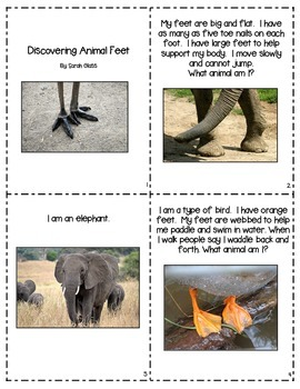 Discovering Animal Feet: An Informational Book