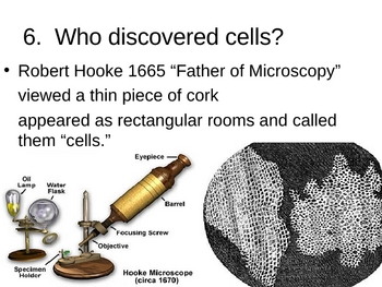 Discovering Cells PowerPoint Presentation