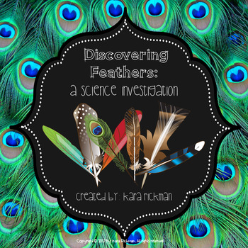 Discovering Feathers: A Science Investigation