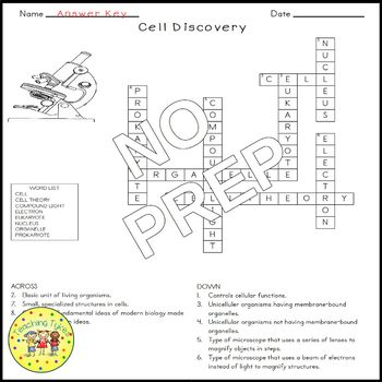 Discovery of Cells Biology Science Crossword Coloring Worksheet Middle School