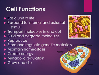 Discovery of Cells & Cell Theory Power Point